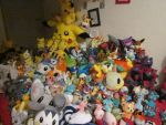 Pokeplush collection by PieCreature
