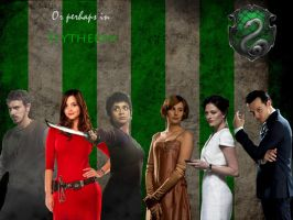 Or Perhaps In Slytherin by KatePendragon