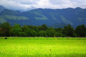 Field Mountain Background by Limited-Vision-Stock