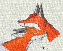Foxes by Kite-7