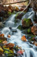 Springtime Waterfall by mjohanson