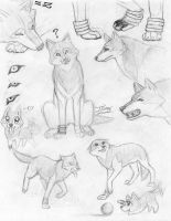 Toboe sketches by itsmar