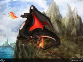 Spinvis the charizard by MRZoet