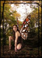 Forest Pixie 2 by solkee