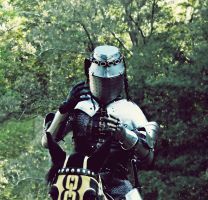 Mounted Medieval Martial Arts by IntelligentZombie