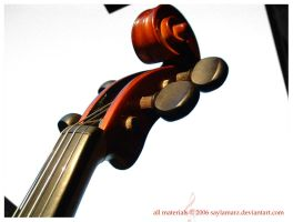 Violin Scroll. by SaylaMarz