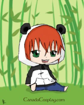 Panda Hoodie Contest Entry  by Smokey-Doodle