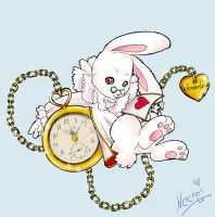 The White Rabbit by neerai