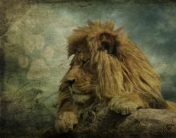 Regal Beast by Kerri--Jo