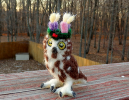 Felted Festive Saw-Whet Owl by DancingVulture