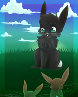 crowfeather the cat-rabbit by chocobeery