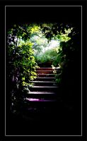 Stair Light by InsanitySuccess