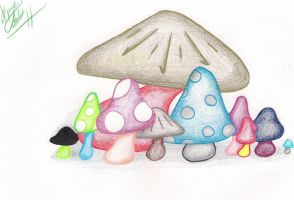 Mushrooms O.o by Atama--Muhonnin