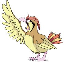 017 - Pidgeotto by Winter-Freak