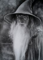 Gandalf the Grey by CastrumAethereus