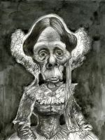 Civil War era old woman by Caricature80