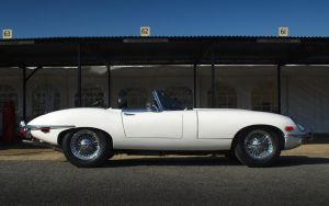 E-Type in White by FurLined
