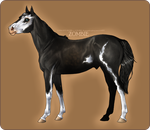 TCrS Zombie - YEARLING CONFIRMATION by noebelle