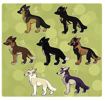 GSD Adopts Auctions -ENDED- by xWolfPrincex