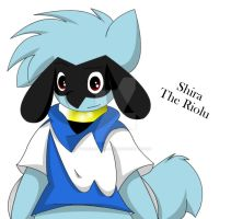 Shira The Riolu by Zander-The-Artist