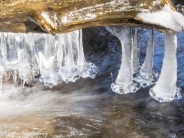 Parker Creek icicles 395150409-135 by MartinGollery
