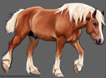 Belgian Horse by Chicken-Priestess