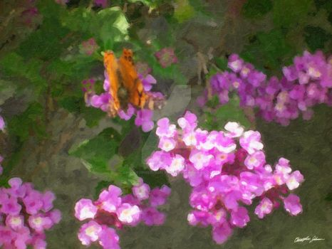 Lantana and Butterfly by ChristopherinMexico