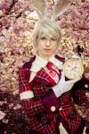 .: Heart no Kuni no Alice: Two days slow:. by CatZombie