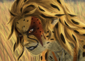 Cheetara detail by gidb7