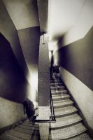 Duality - Escher Vision I by lxrichbirdsf