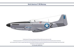 Mustang Somalia 1 by WS-Clave