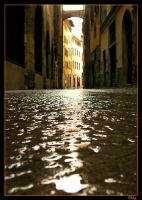 Liquid Glass - Florence V by Elwinga