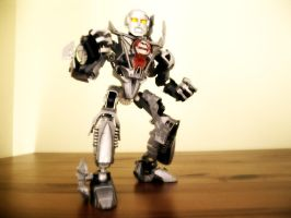 Toa Tom, Fighter by ToaTom