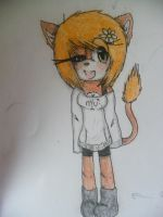 NC: ShiShi The Lion by TailsLover13