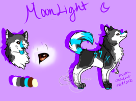 Moonlight Reference by DarkWolfArtist