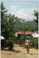 Haiti - The Place by Cleonor