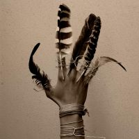 Feather hand by jemapellenicoletta