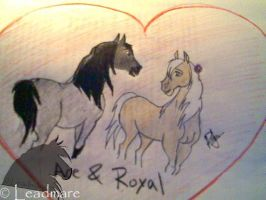 Ace and Royal for Royalleague by Leadmare