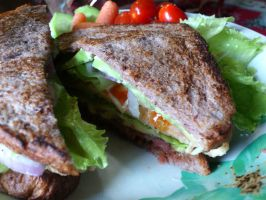 cheese and beef sandwich by plainordinary1