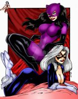 Catwoman and Black Cat by THE-Darcsyde