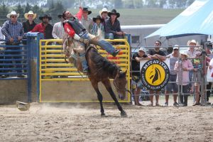 Taupo Rodeo 131 by Sooty-Bunnie