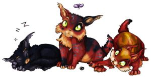 Warcraft Kitties by Marowen