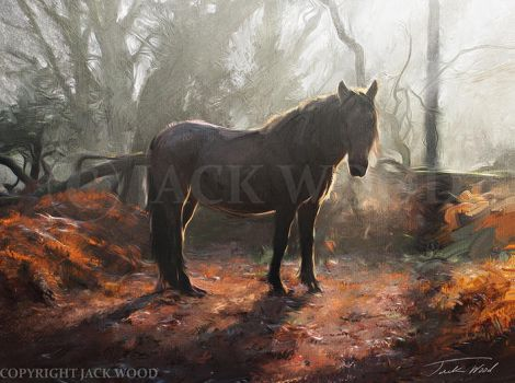 Horse in an Autumn Wood by Jack-Wood