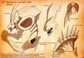 Kha'Zix Natural History Sheet by MatitaIspirati