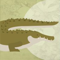 Endangered USA - American Crocodile by Finwitch