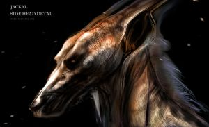 JACKAL CONCEPT - RIDDICK RULE THE DARK by CHARLESRATTERAY