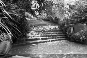 Roma Street Parklands 01 by ShannonIWalters