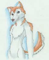 Anthro Husky Free Art by Brierose