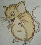 Raticate by TheDaughterOfLink