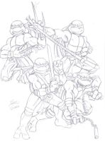 Teenage Mutant Ninja Turtles by IanDimas